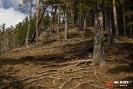 Холм около Археопарка (Ханты-Мансийск)