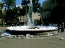 Пенный фонтан