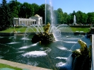 Государственный музей-заповедник «Петергоф» (Фото 24)