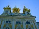Государственный музей-заповедник «Петергоф» (Фото 23)