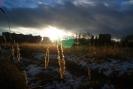 Осень в г. Краснотурьинск (Фото 7)