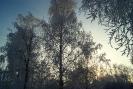 Природа г. Краснотурьинск