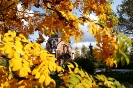 Осень, часовня г. Краснотурьинск (Фото 4)